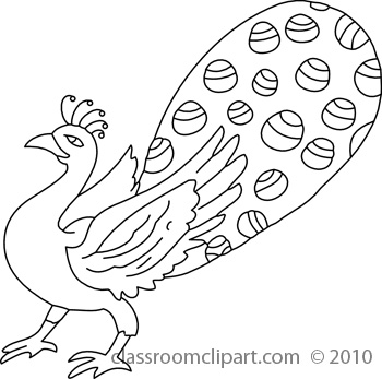 Peacock Drawing Outline at PaintingValley.com.