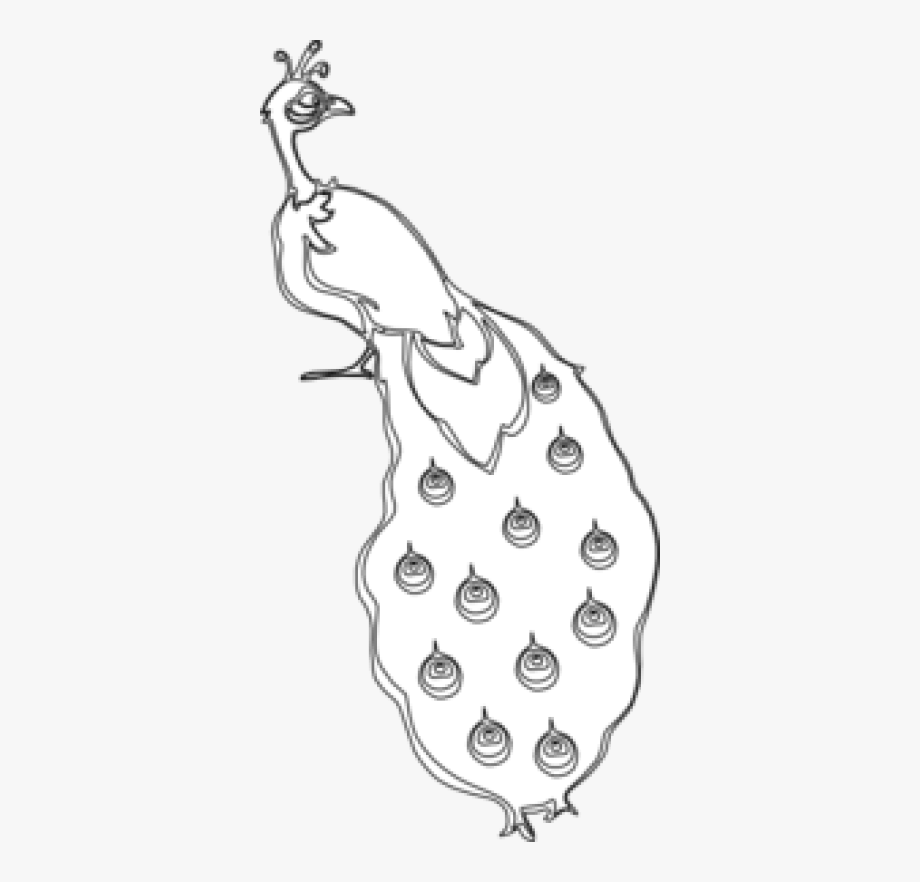 Download Free Png Peacock Outline Clip Art At Pngio.