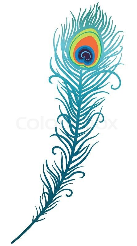 Peacock Feather Drawing Clipart.