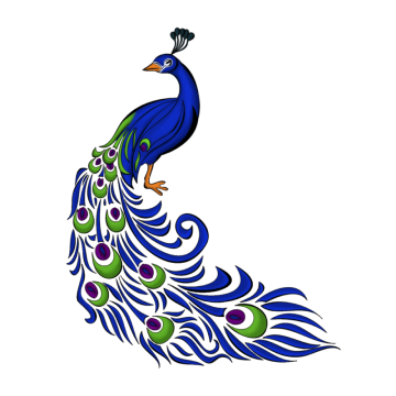 Peacock Png, Vector, PSD, and Clipart With Transparent.