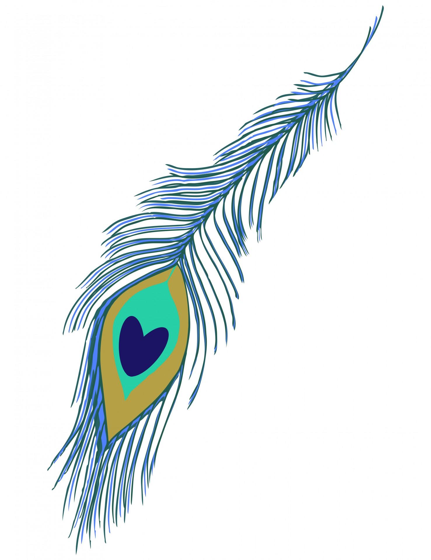 85+ Peacock Feather Clip Art.