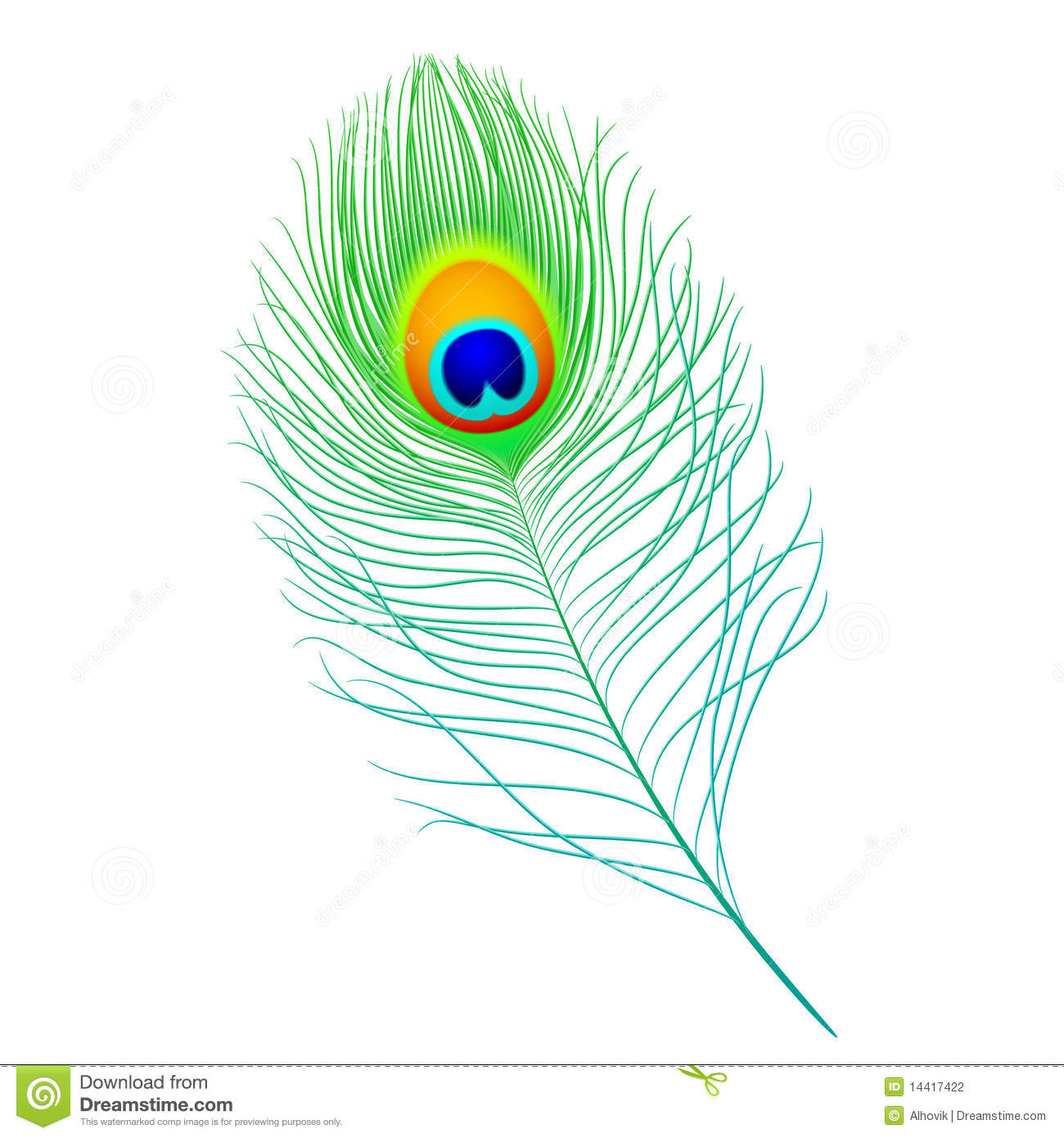 Peacock feather clip art.