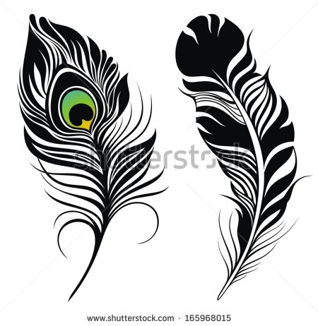 Peacock feather clipart.
