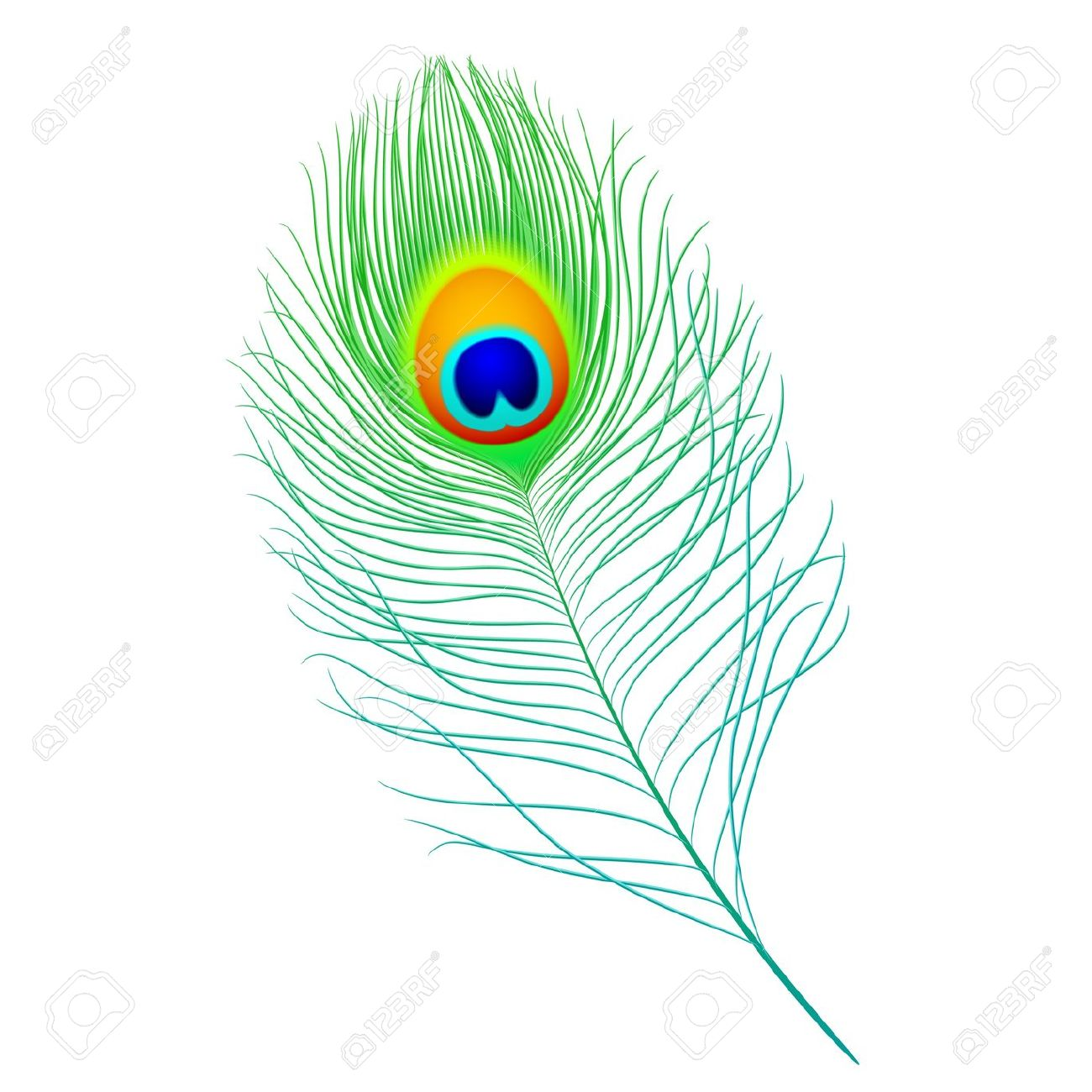 Clipart Of Peacock Feather.