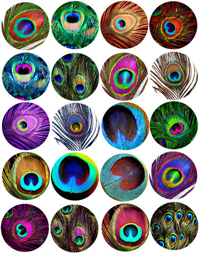 Peacock feather patterns clip art collage sheet 1 inch squares.