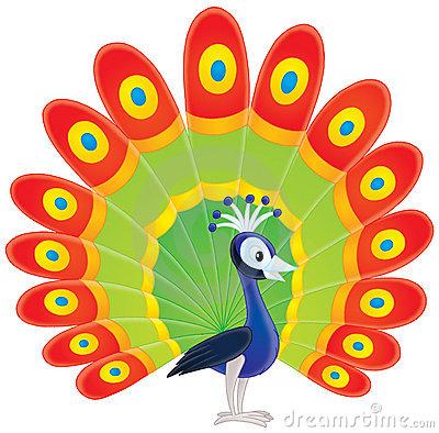 Peafowl clipart #18