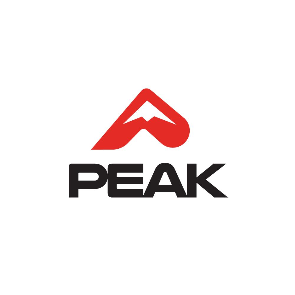 Mountain Peak Logo.