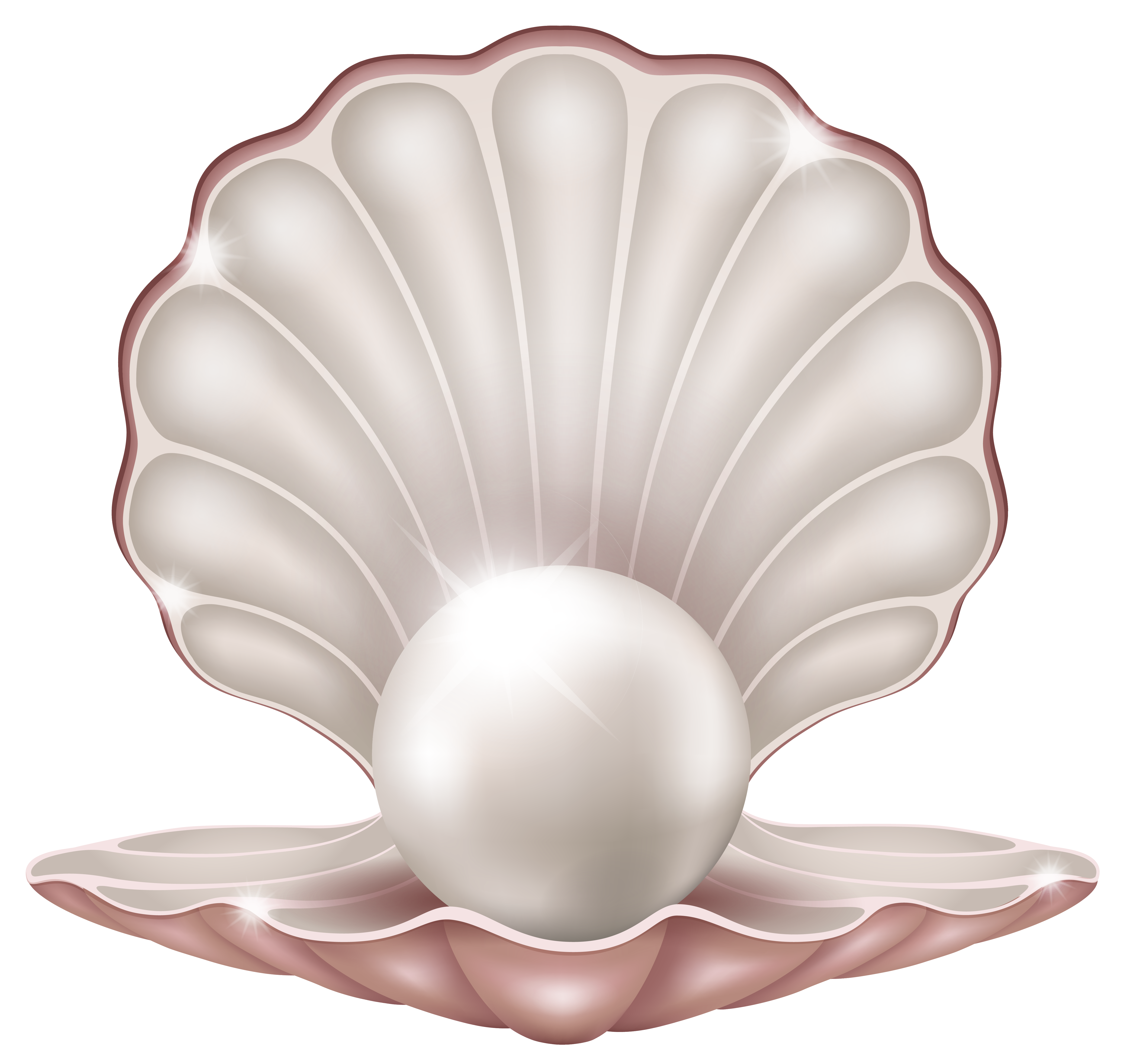 Beautiful Clam with Pearl PNG Clipart Image.