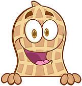Peanut Clip Art.