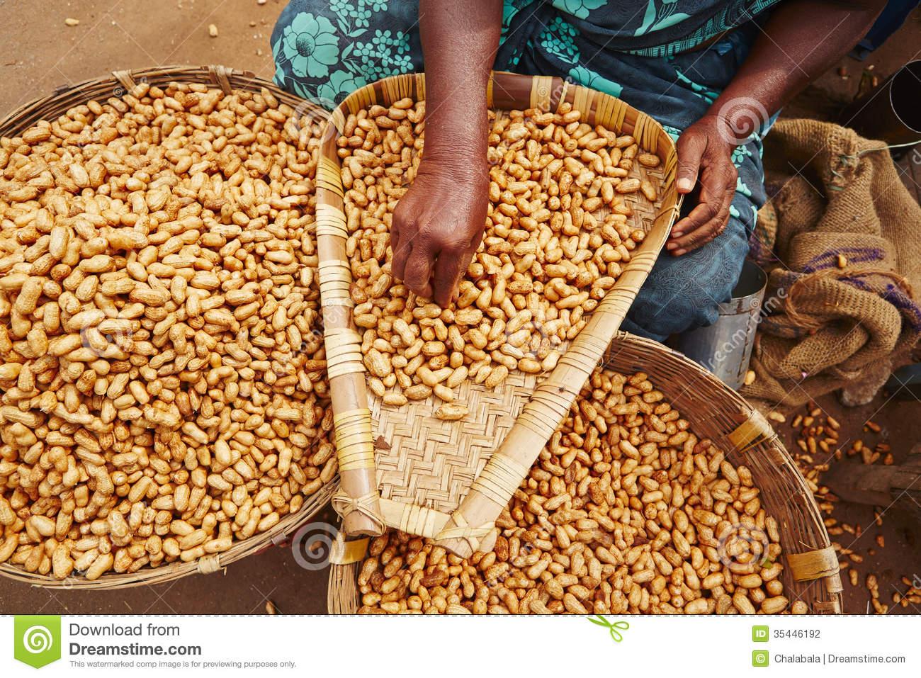 Peanuts Stock Photography.