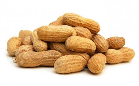 Groundnut.