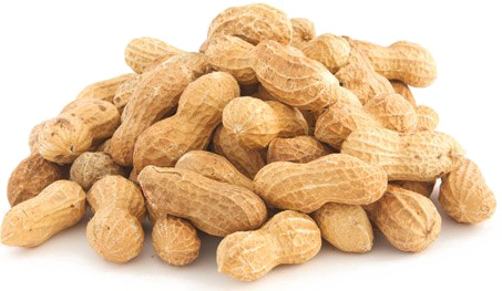 Peanut PNG Images Transparent Free Download.