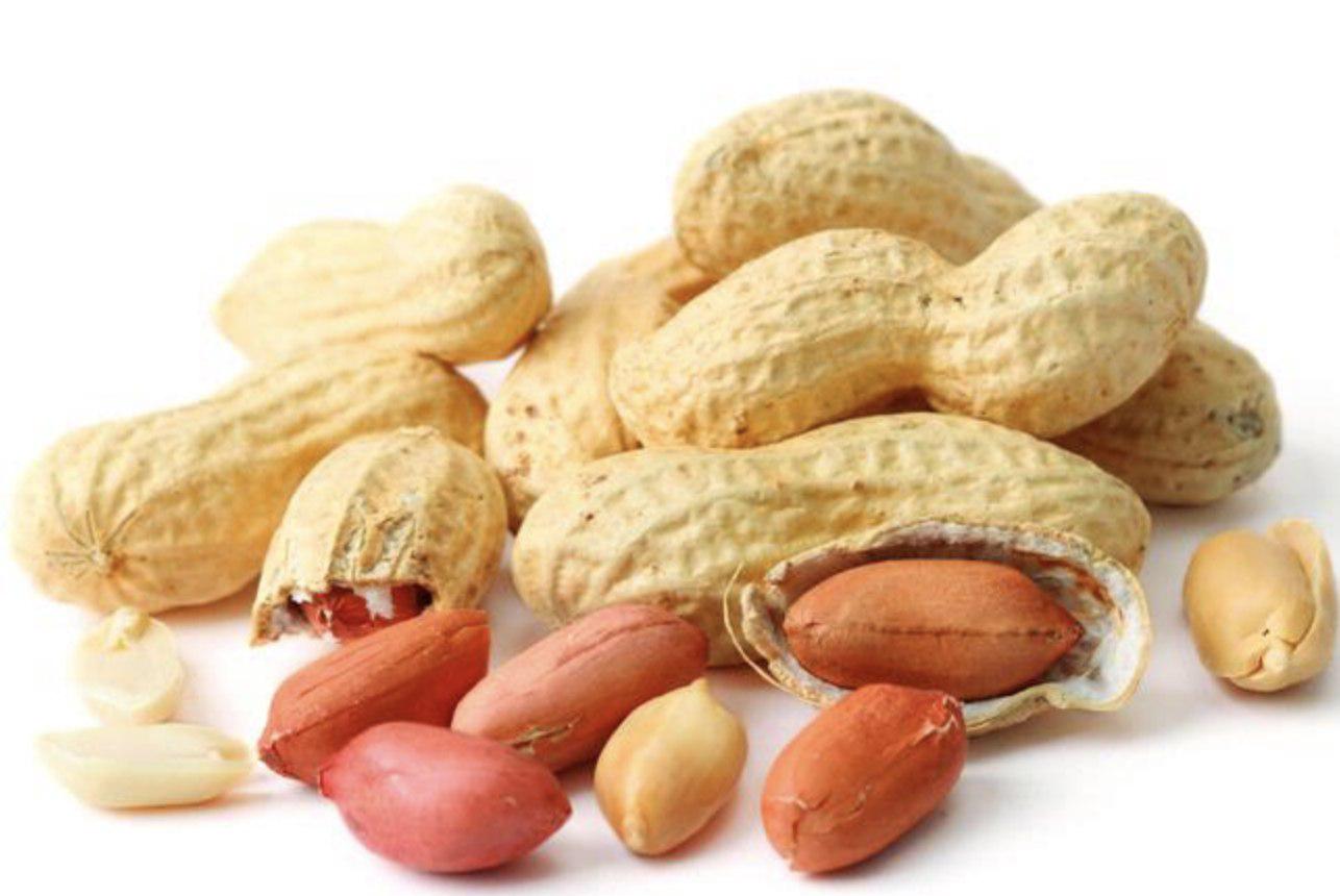 Peanut PNG Image.