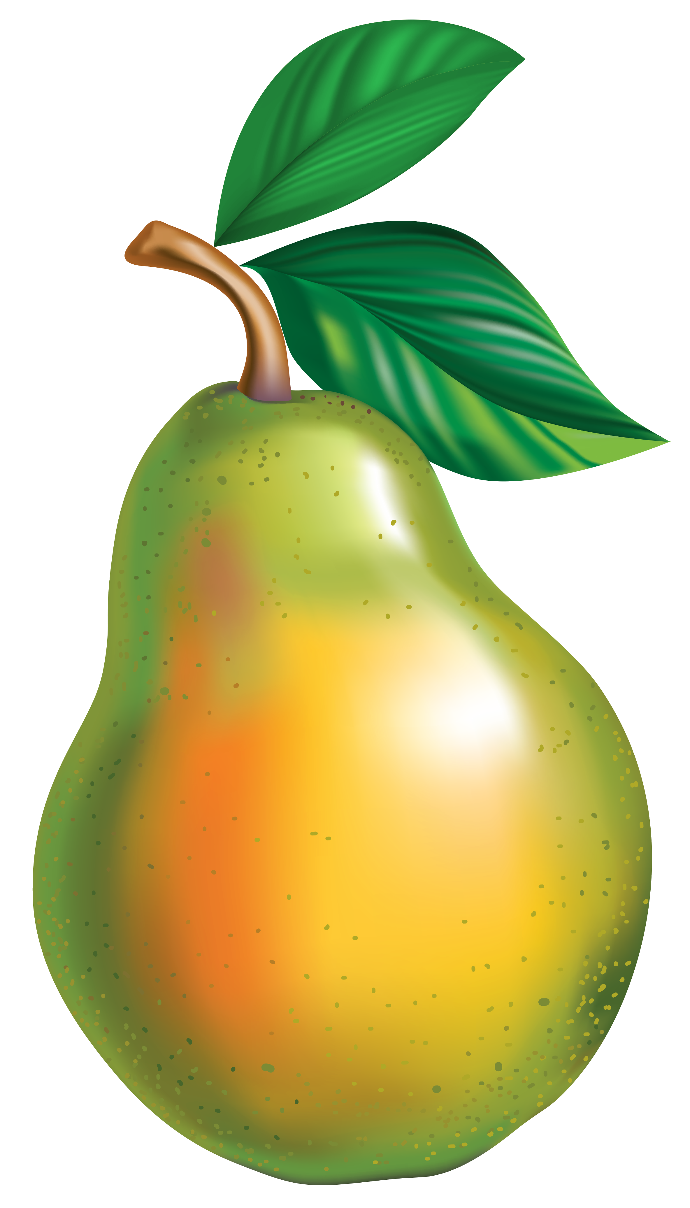 Pear PNG Clipart Picture.