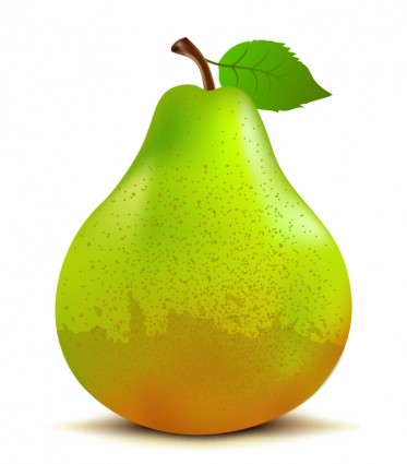 783 Pear free clipart.
