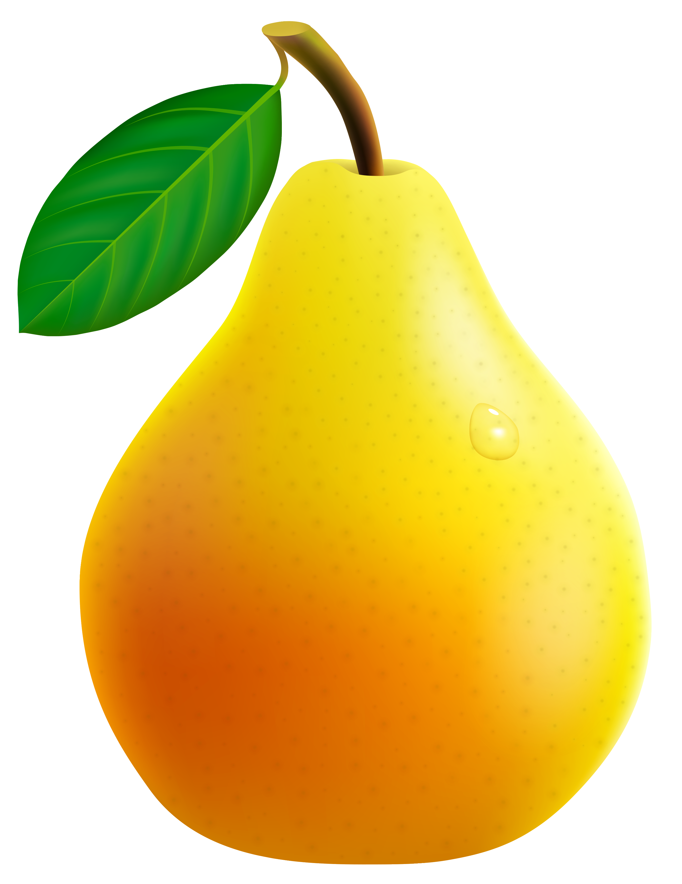 Yellow Pear PNG Vector Clipart Image.