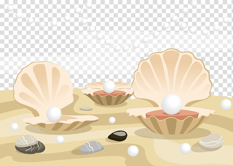 Three white pearls illustration, Oyster Clam Pearl Seashell.