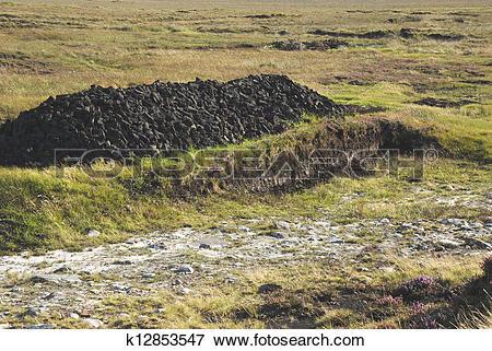 Picture of Irish peat bog k12853547.