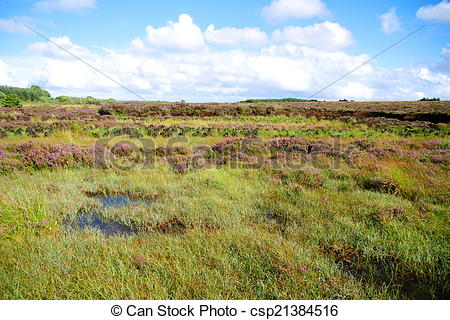 Stock Photography of Peat Bog in Ireland.