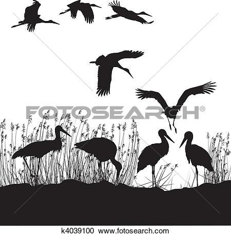 Clipart of Storks in peat k4039100.