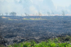 Peat Fire Stock Photos.