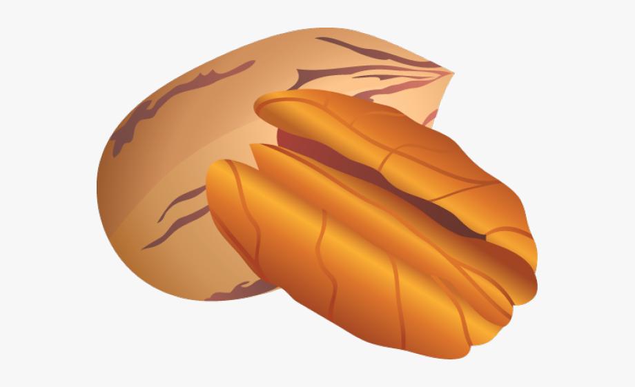 Nut Clip Art.