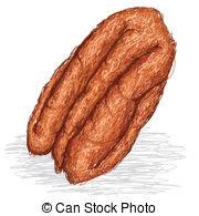 Pecan nut Clipart Vector Graphics. 205 Pecan nut EPS clip art.