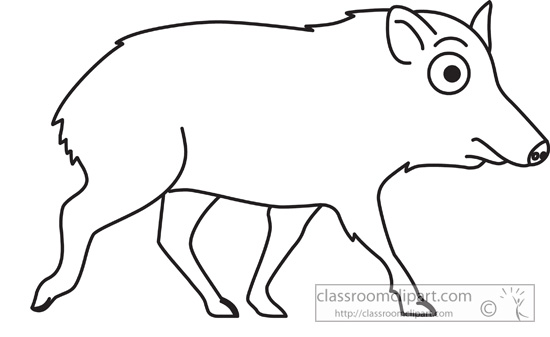 Animals : chacoan_peccary_outline : Classroom Clipart.