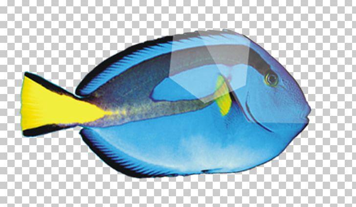 Deep Sea Fish Peces De Mar PNG, Clipart, Animals, Balloon.