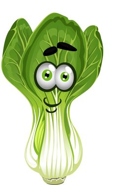 Clipart vegetables pechay, Clipart vegetables pechay.