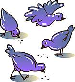 Royalty Free Pecks Clip Art.