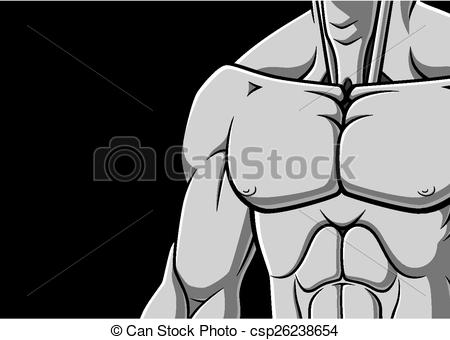 Clipart Vector of Muscular chest.