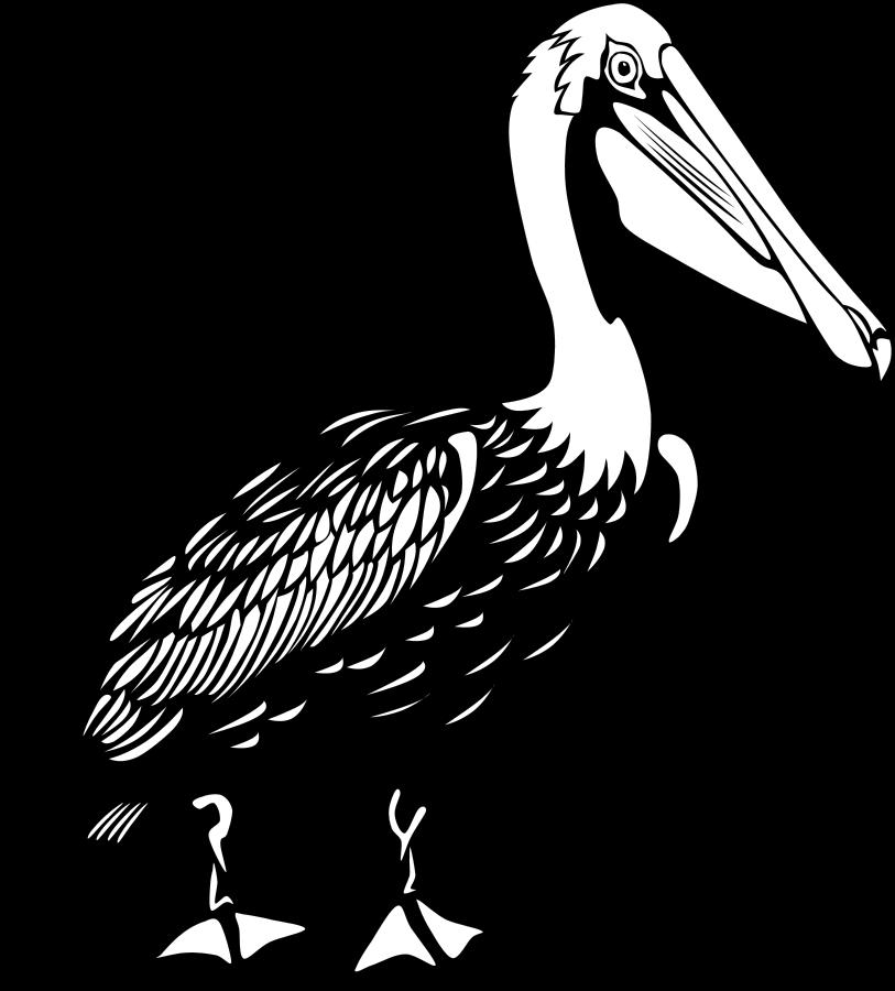 Pelican Clip Art Free.