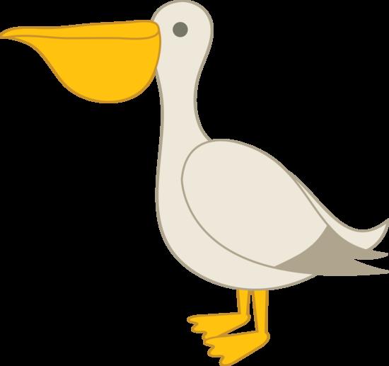 Pelikan clipart #3