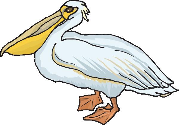 Pelican Clipart.