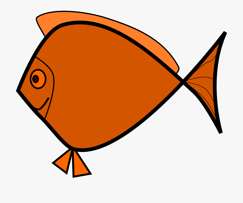 Fish Jpg Royalty Free.