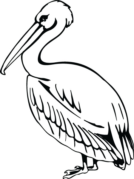 White Pelican Bird Clip Art Graphic For Engraved Products.
