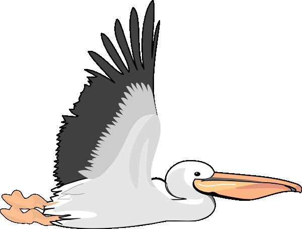 Pelican Clip Art at Clker.com.