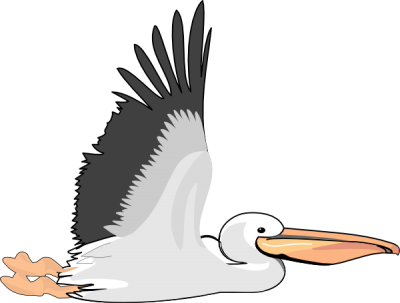 Download PELICAN Free PNG transparent image and clipart.