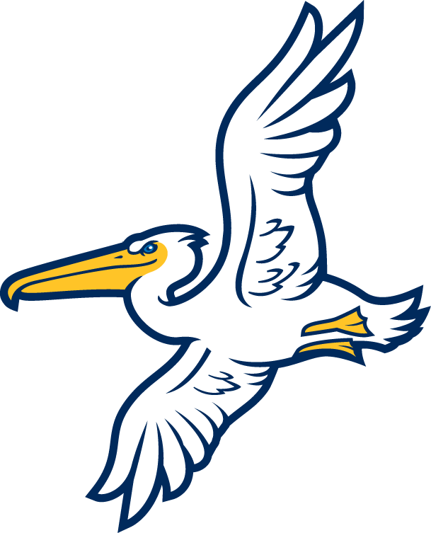 Myrtle Beach Pelicans Alternate Logo (2007).