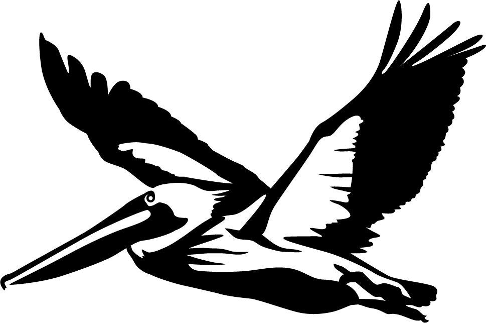 Pelican Silhouette at GetDrawings.com.