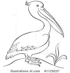 New orleans pelicans clipart.