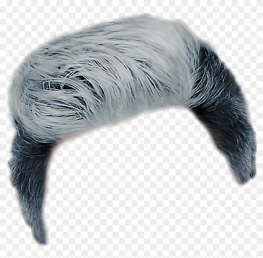 peluca De Hombre.