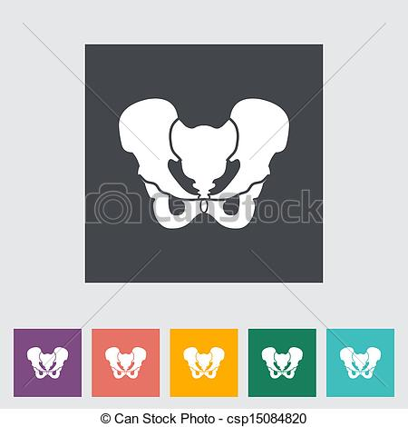 Pelvis Stock Illustrations. 2,172 Pelvis clip art images and.