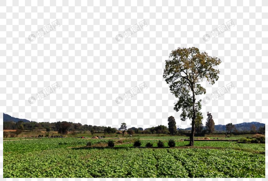 pemandangan alam gambar unduh gratis_ Grafik.