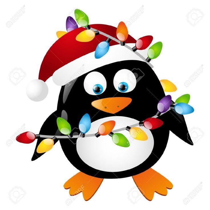 17 best ideas about Penguin Images on Pinterest.
