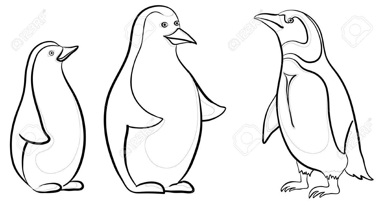 Emperor Penguin Clipart Black And White.