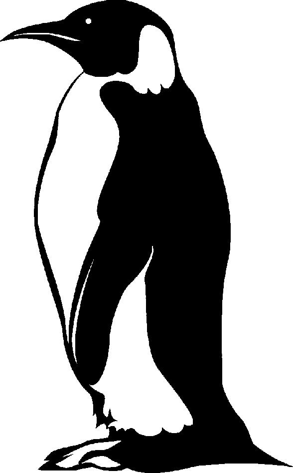Fat penguin.
