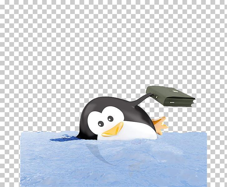 King penguin Bird Emperor Penguin, Swimming penguins PNG.