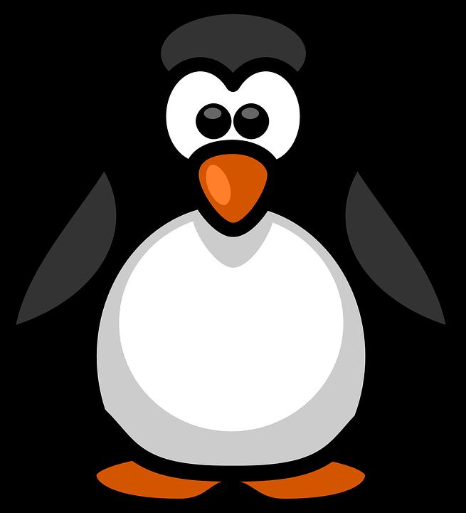 Penguin clipart vector, Penguin vector Transparent FREE for.